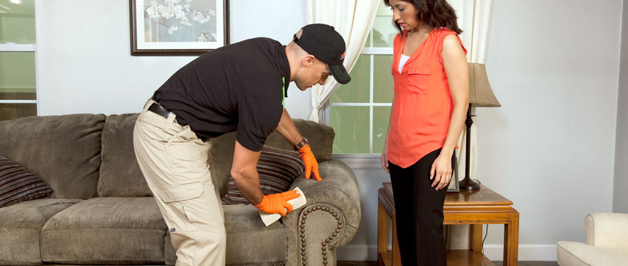 Jackson, MS carpet upholstery cleaning