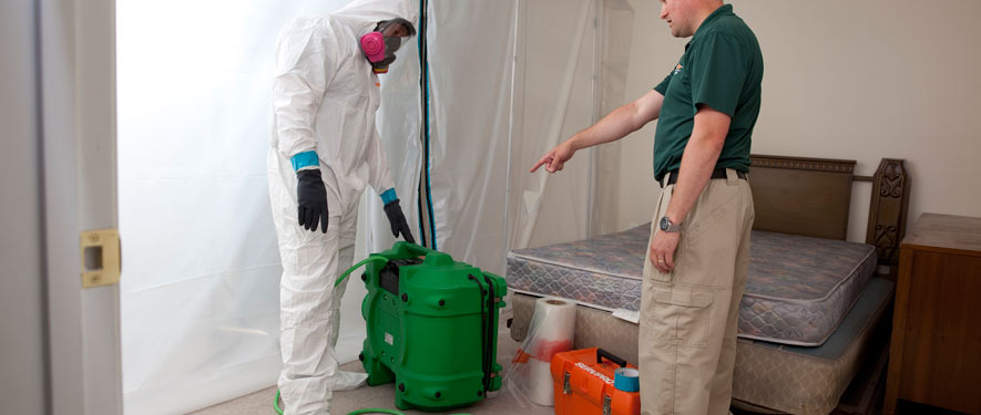 Jackson, MS mold removal process
